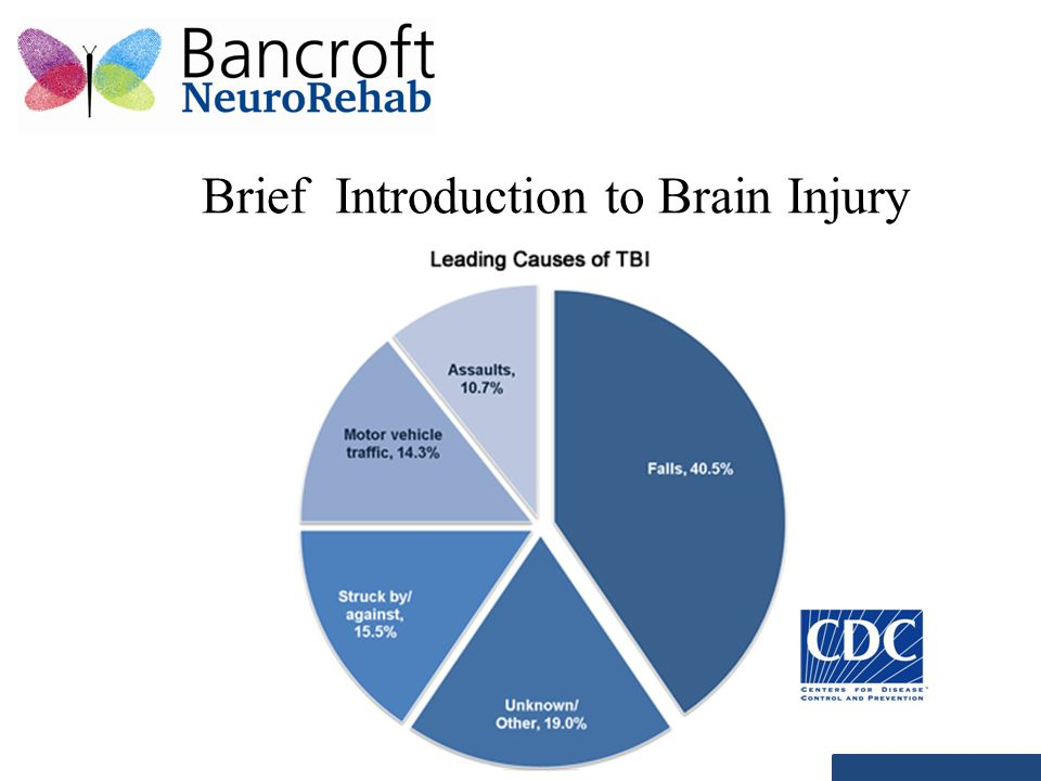 Brief Introduction to Brain Injury
