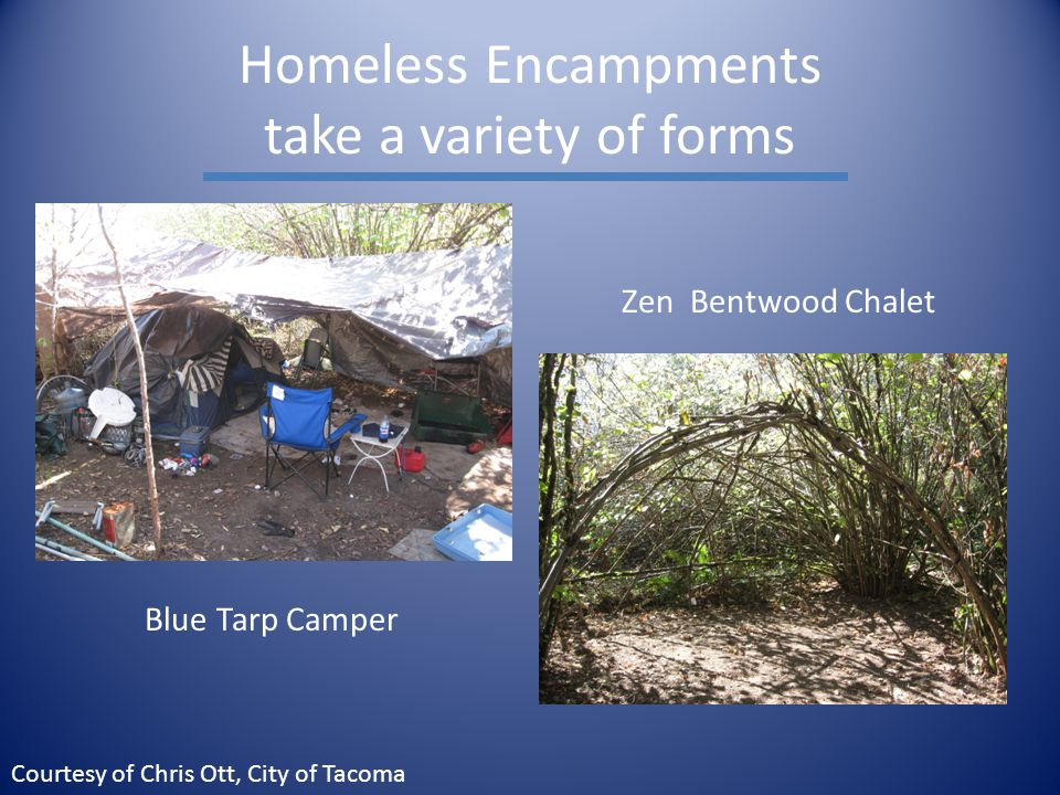 Homeless Encampments take a variety of forms Blue Tarp Camper Zen Bentwood Chalet Courtesy of Chris Ott, City of Tacoma