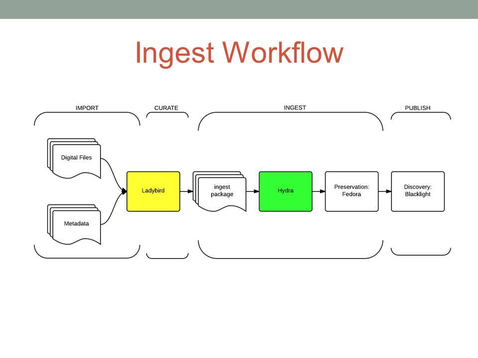 Ingest Workflow