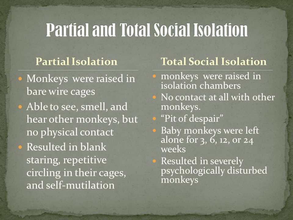 Partial Isolation Monkeys were raised in bare wire cages Able to see, smell, and hear other monkeys, but no physical contact Resulted in blank staring, repetitive circling in their cages, and self-mutilation monkeys were raised in isolation chambers No contact at all with other monkeys.