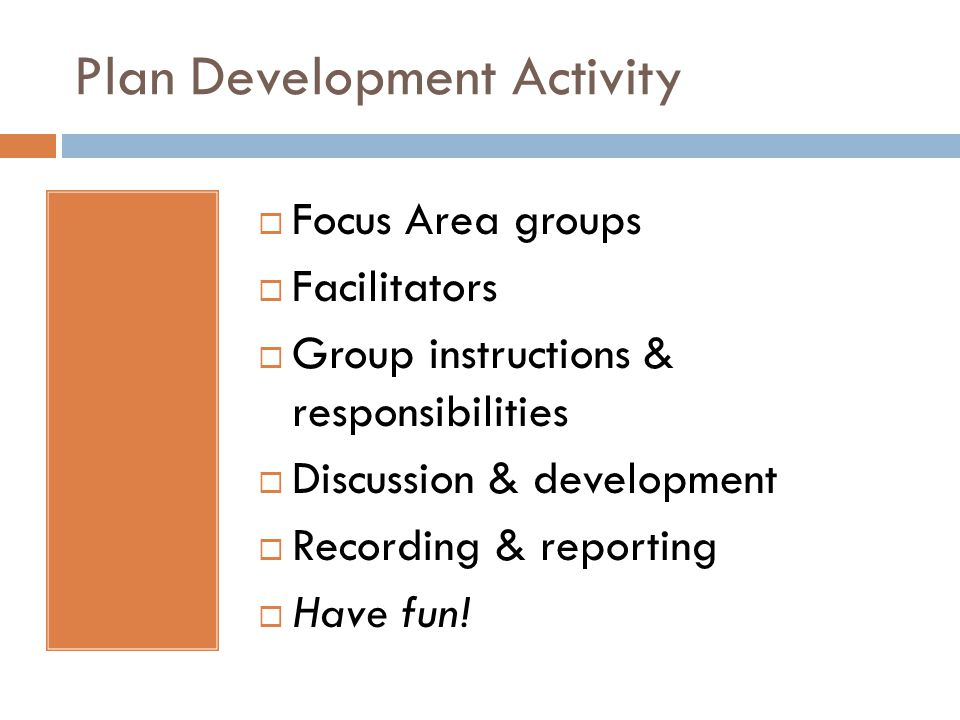 Plan Development Activity  Focus Area groups  Facilitators  Group instructions & responsibilities  Discussion & development  Recording & reporting  Have fun!