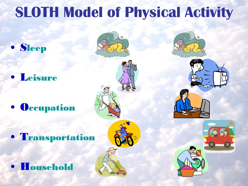 SLOTH Model of Physical Activity S leep L eisure O ccupation T ransportation H ousehold