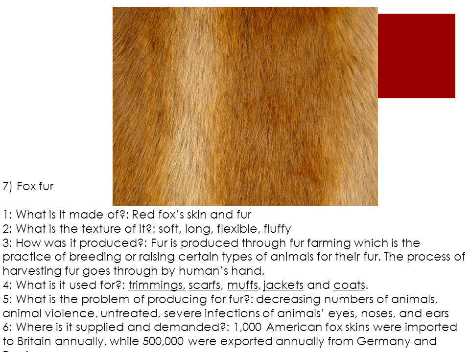 7) Fox fur 1: What is it made of?: Red fox's skin and fur 2: What is the texture of it?: soft, long, flexible, fluffy 3: How was it produced?: Fur is produced through fur farming which is the practice of breeding or raising certain types of animals for their fur.
