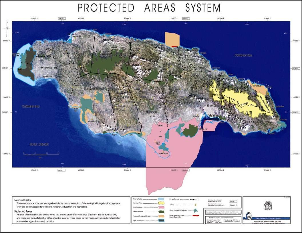 Protected Areas Declared under the Natural Resources Conservation Authority PROTECTED AREASDECLARATION DATE Montego Bay Marine ParkJune 5, 1992 Blue and John Crow Mountains National Park February 26, 1993 Negril Environmental Protection AreaNovember 28, 1997 Negril Marine ParkMarch 4, 1998 Palisadoes/Port Royal Protected AreaSeptember 18, 1998 Coral Spring – Mountain Spring Protected Area September 18, 1998 Portland Bight Protected AreaApril 22, 1999 Ocho Rios Marine ParkAugust 16, 1999 Mason River Protected AreaNovember 14, 2002