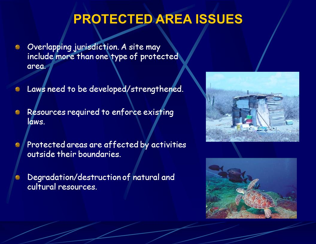 PROTECTED AREA ISSUES Overlapping jurisdiction.