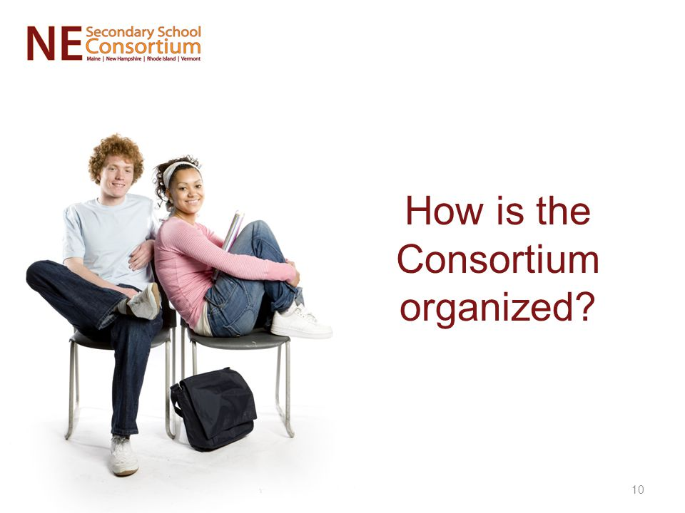 How is the Consortium organized? 10