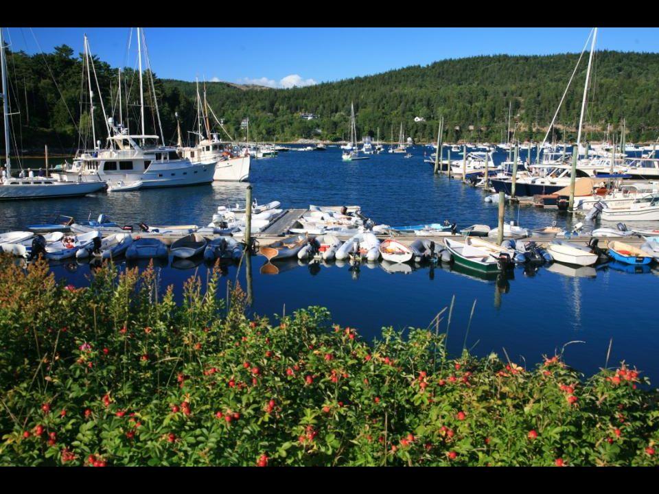 Acadia National Park, the coast of Maine