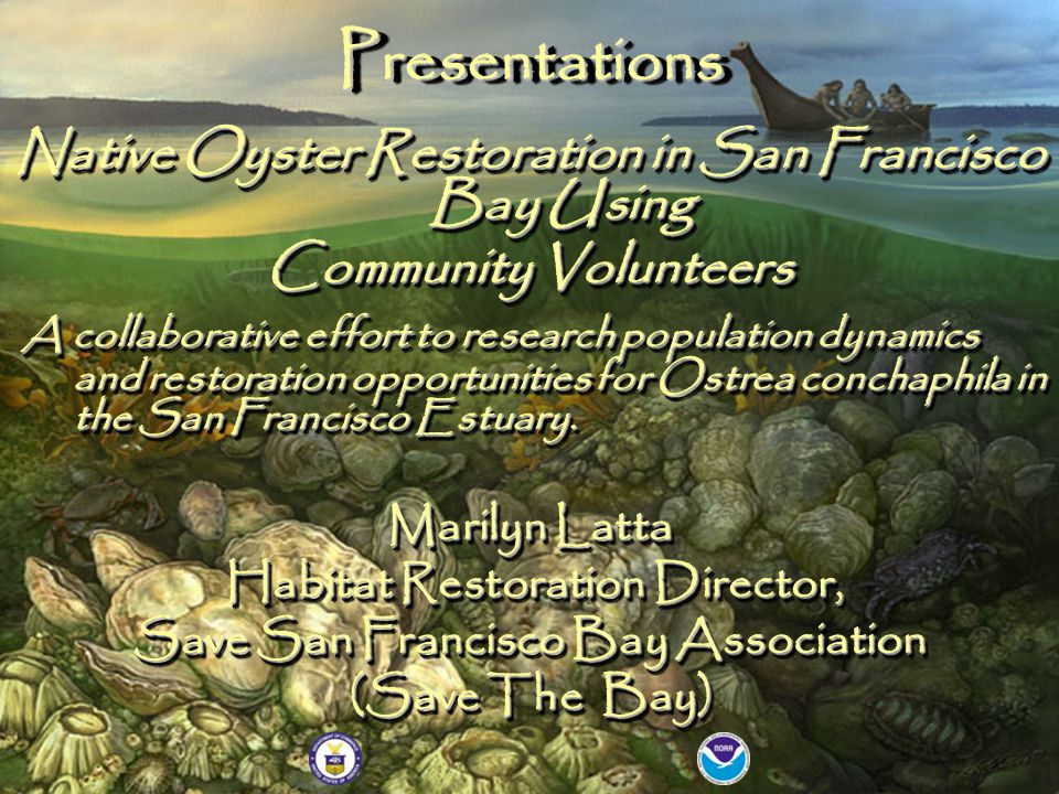 Native Oyster Restoration in San Francisco Bay Using Community Volunteers A collaborative effort to research population dynamics and restoration opportunities for Ostrea conchaphila in the San Francisco Estuary.