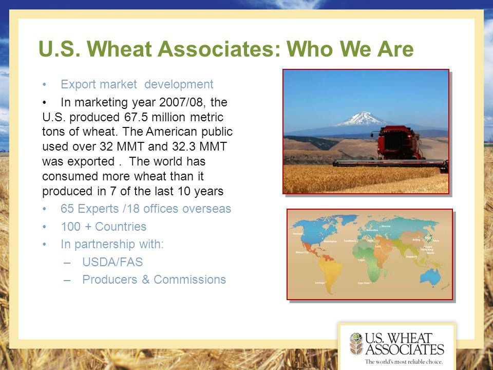 U.S. Wheat Associates: Who We Are Export market development In marketing year 2007/08, the U.S. produced 67.5 million metric tons of wheat. The Americ