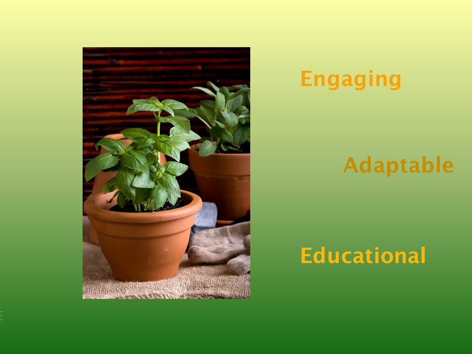 1.1. Instructions for Plant Pots 2. 2. E-Journal 3.
