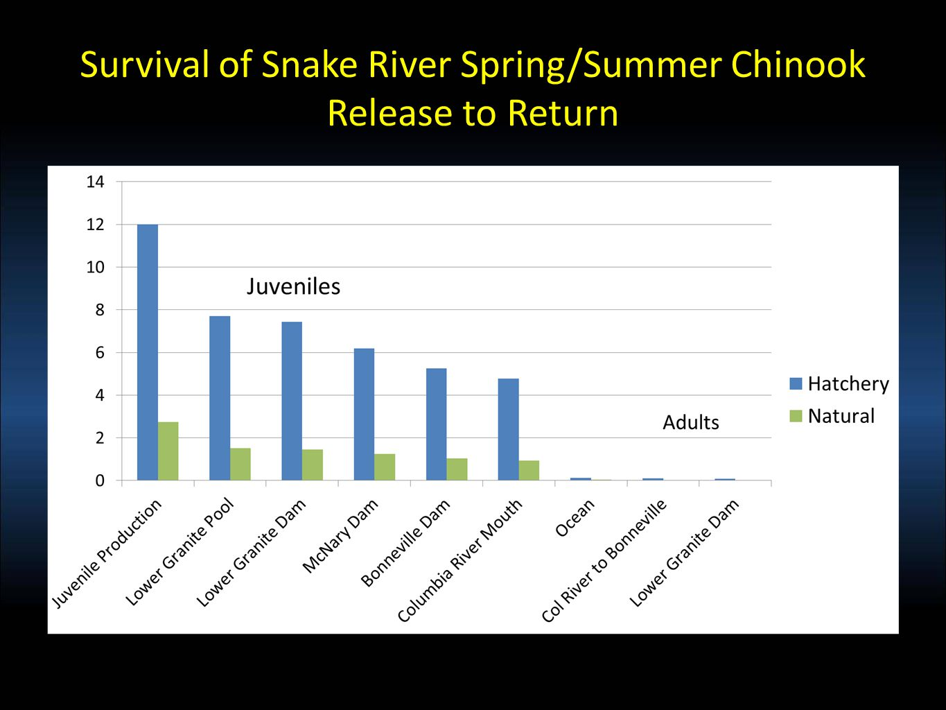 Survival of Snake River Spring/Summer Chinook Release to Return