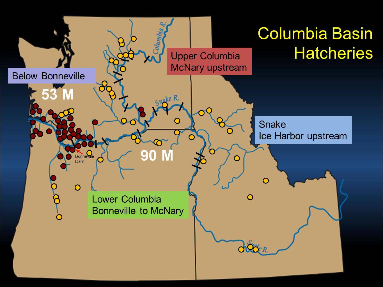 Columbia Basin salmon and steelhead production above Bonneville Dam – by primary purpose 90 million salmon and steelhead