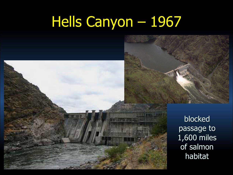 Hells Canyon – 1967 blocked passage to 1,600 miles of salmon habitat
