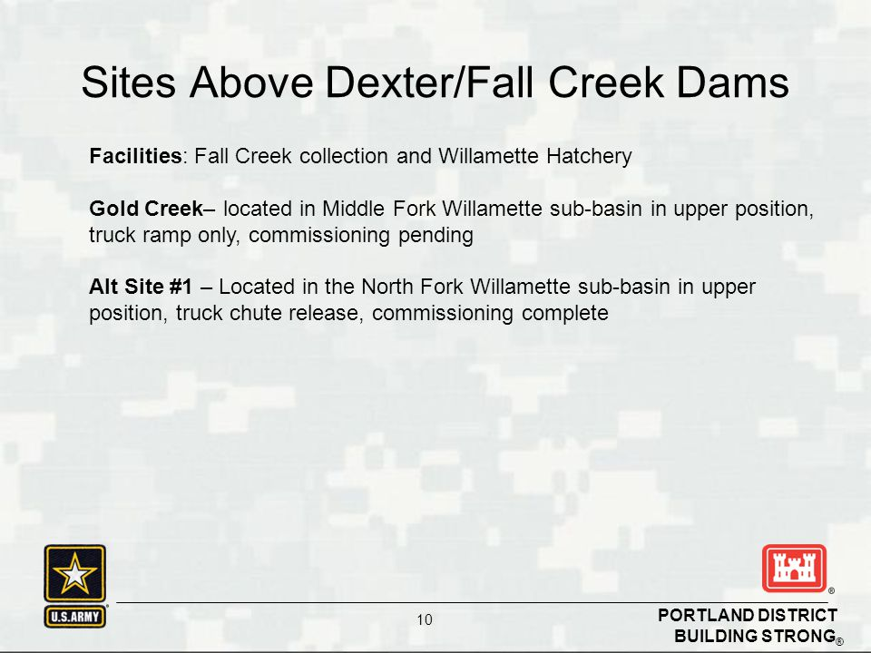 BUILDING STRONG ® PORTLAND DISTRICT 10 Sites Above Dexter/Fall Creek Dams Facilities: Fall Creek collection and Willamette Hatchery Gold Creek– locate