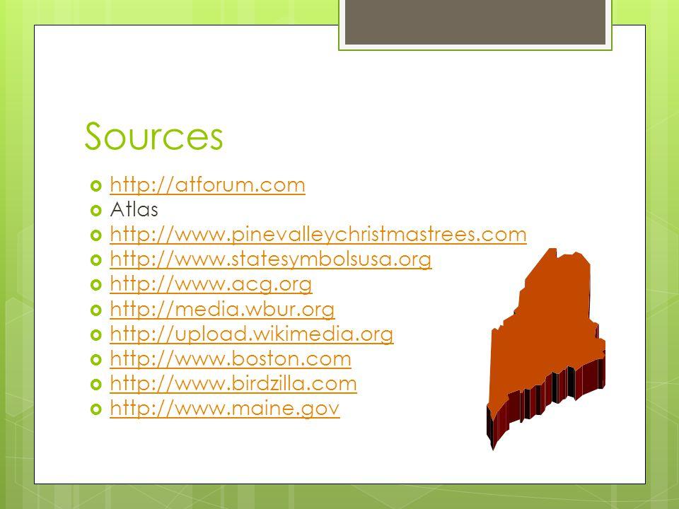 Sources  http://atforum.com http://atforum.com  Atlas  http://www.pinevalleychristmastrees.com http://www.pinevalleychristmastrees.com  http://www.statesymbolsusa.org http://www.statesymbolsusa.org  http://www.acg.org http://www.acg.org  http://media.wbur.org http://media.wbur.org  http://upload.wikimedia.org http://upload.wikimedia.org  http://www.boston.com http://www.boston.com  http://www.birdzilla.com http://www.birdzilla.com  http://www.maine.gov http://www.maine.gov