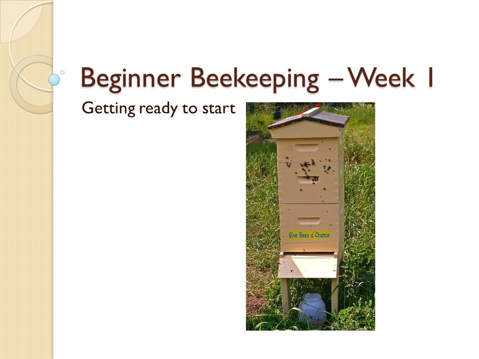 Beginner Beekeeping – Week 1 Getting ready to start