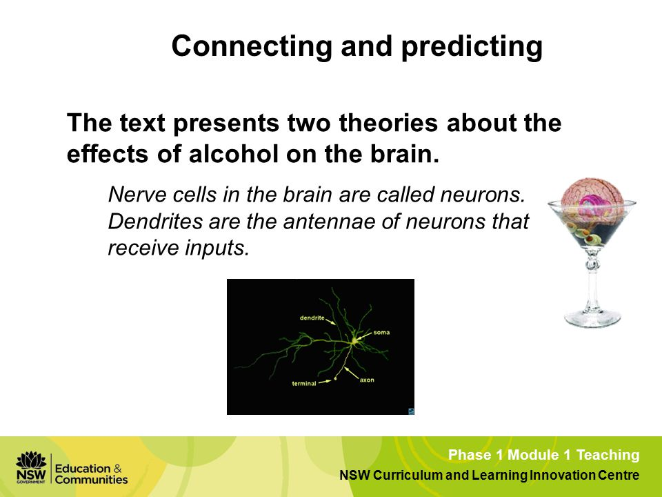 Phase 1 Module 1 Teaching NSW Curriculum and Learning Innovation Centre The text presents two theories about the effects of alcohol on the brain.