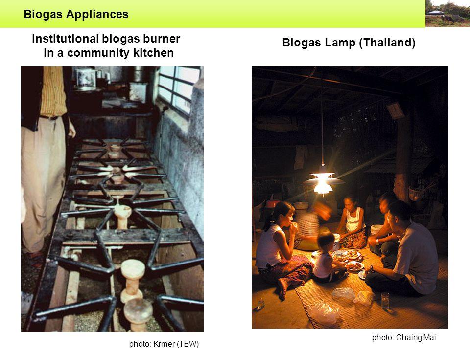 Biogas Appliances Biogas Water Heater (China) Biogas Generator Biogas Rice Cooker (China)