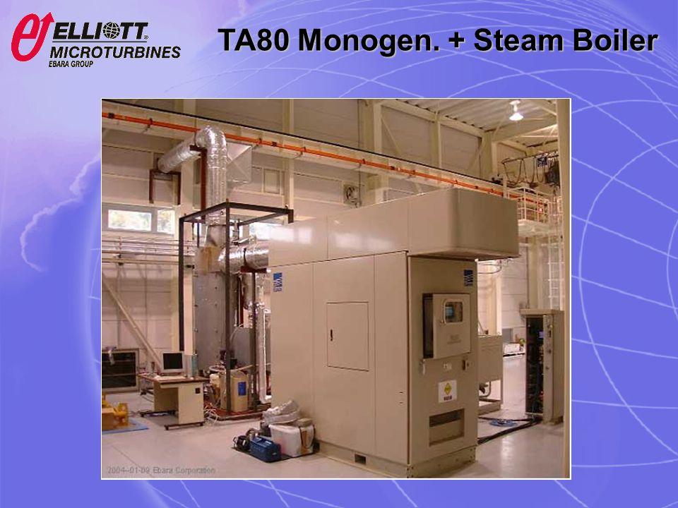 TA80 Monogen. + Steam Boiler