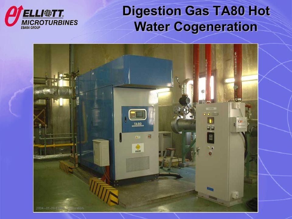 Digestion Gas TA80 Hot Water Cogeneration