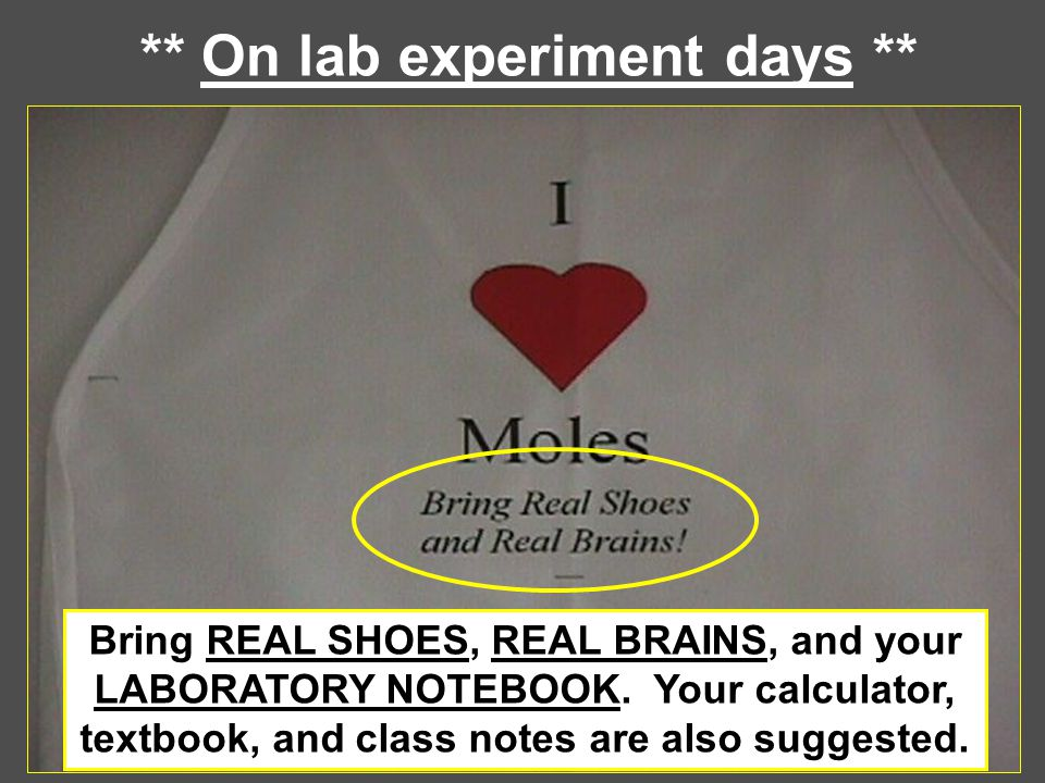 ** On lab experiment days ** Bring REAL SHOES, REAL BRAINS, and your LABORATORY NOTEBOOK. Your calculator, textbook, and class notes are also suggeste