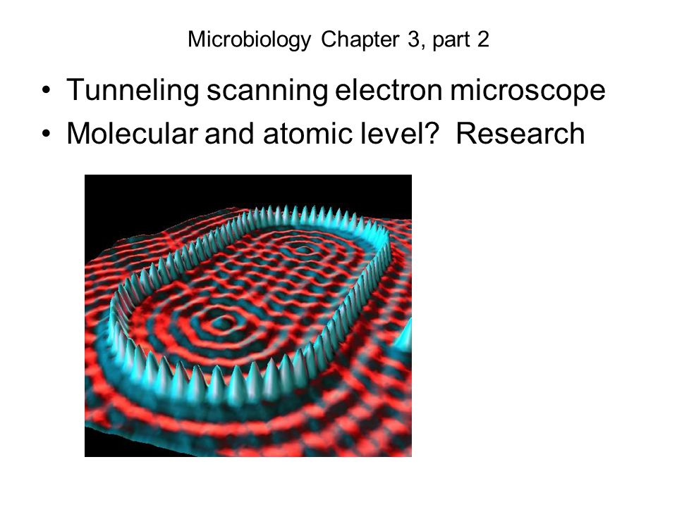 Microbiology Chapter 3, part 2 Tunneling scanning electron microscope Molecular and atomic level.