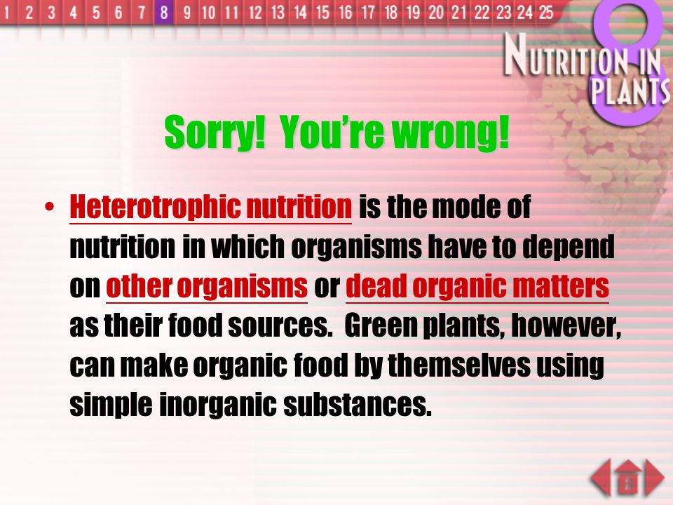 Review Question Which mode of nutrition do the green plants carry out.