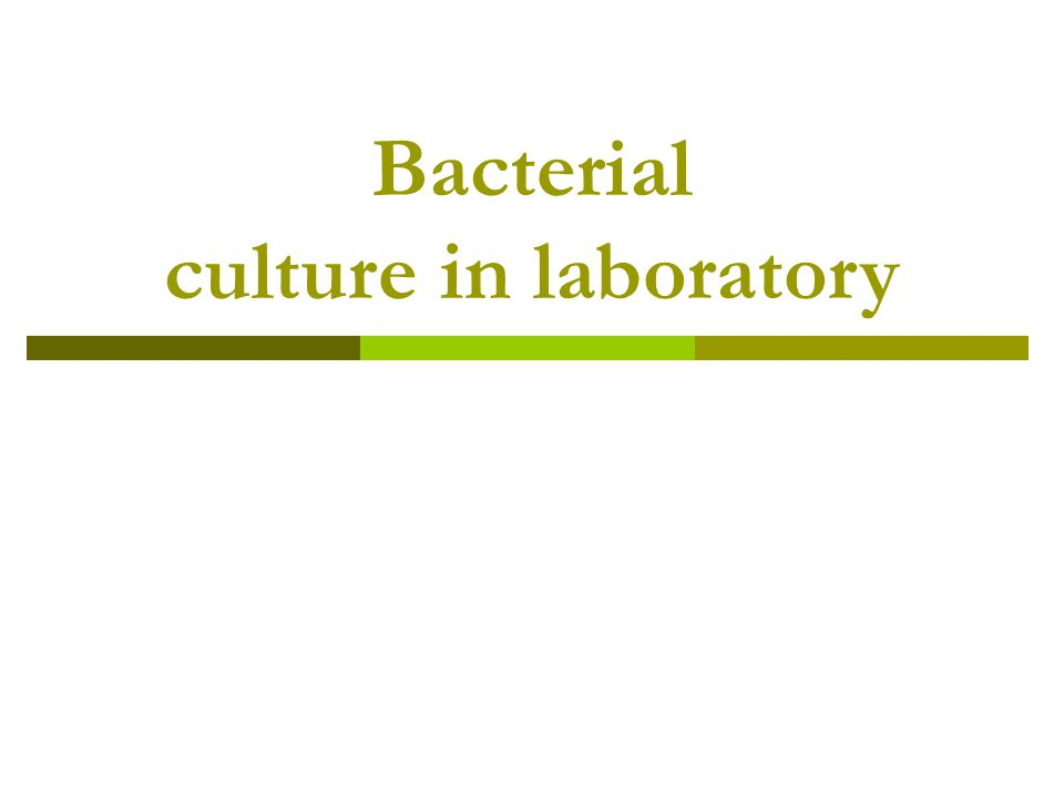Introduction : bacterial growth