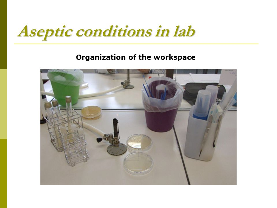 Aseptic conditions in lab Organization of the workspace