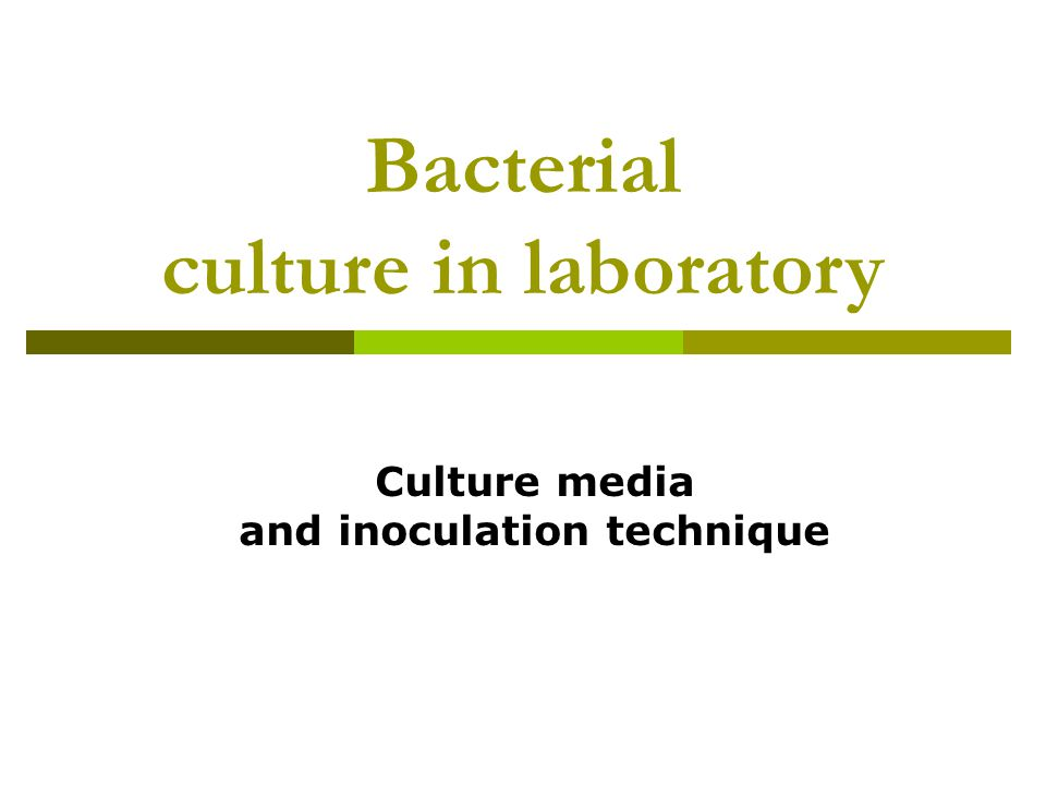 Bacterial culture in laboratory Culture media and inoculation technique