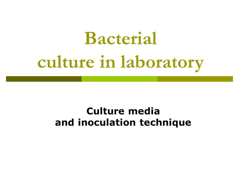 Culture media  Solid  Solid by adding a gelling agent (agar) to a liquid media  Liquid