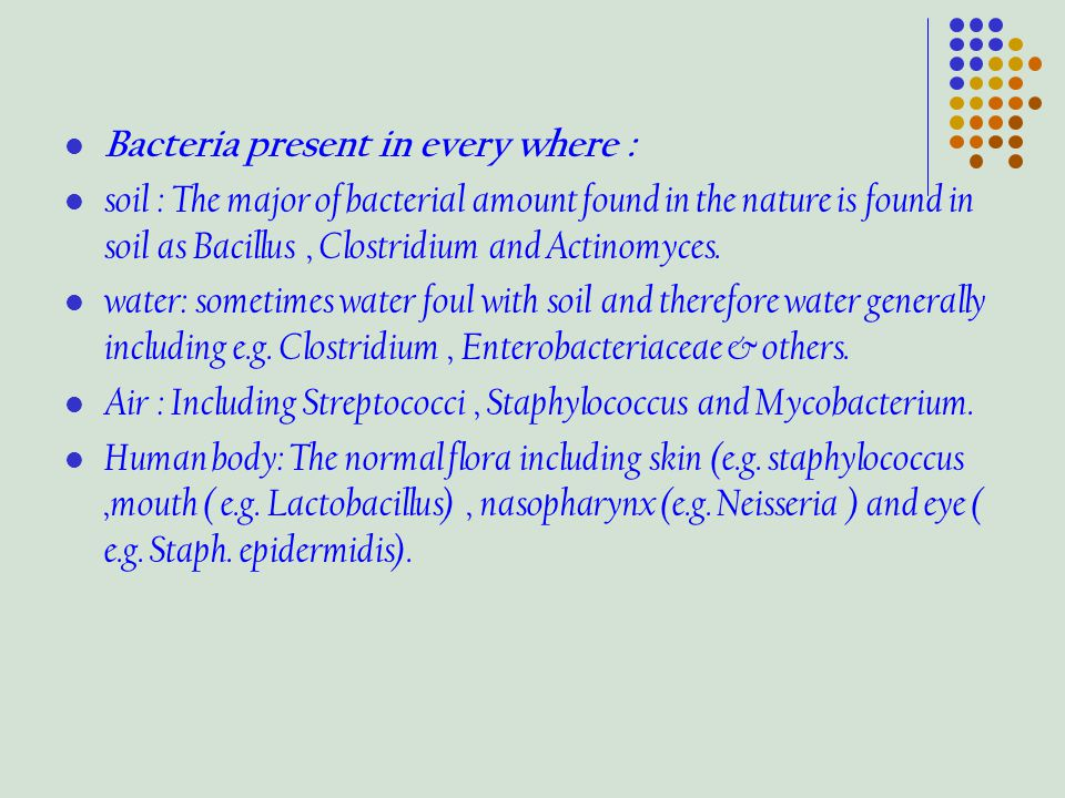 Bacteria present in every where : soil : The major of bacterial amount found in the nature is found in soil as Bacillus, Clostridium and Actinomyces.