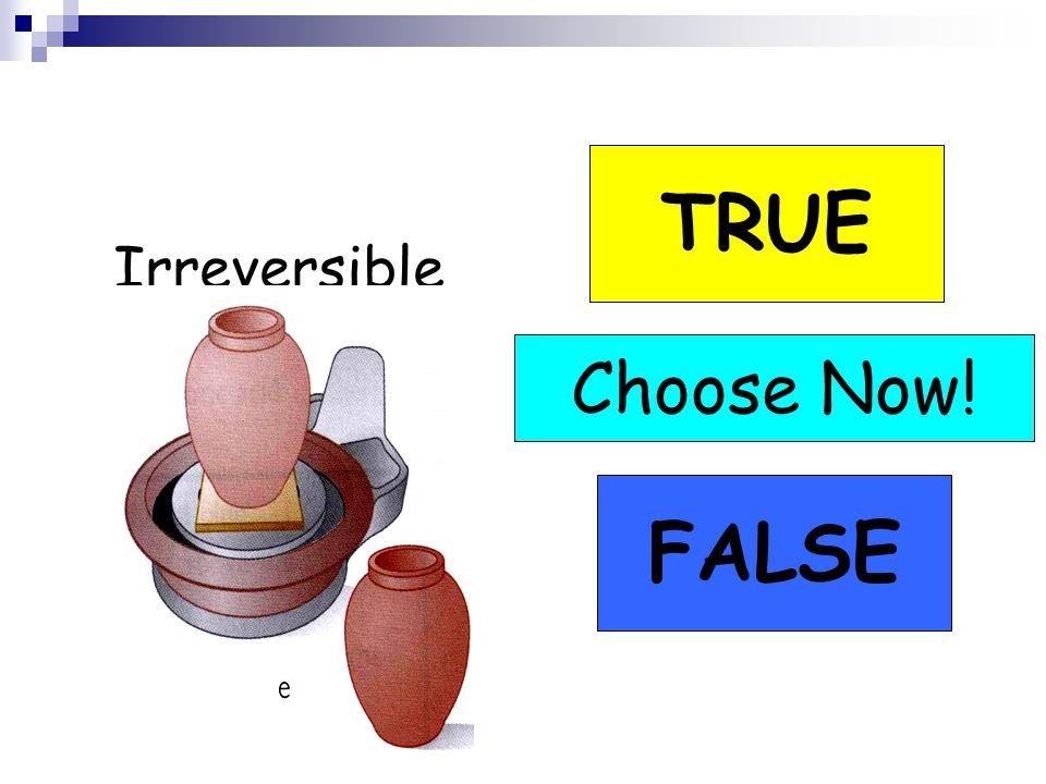 Irreversible TRUE FALSE Choose Now! TRUE