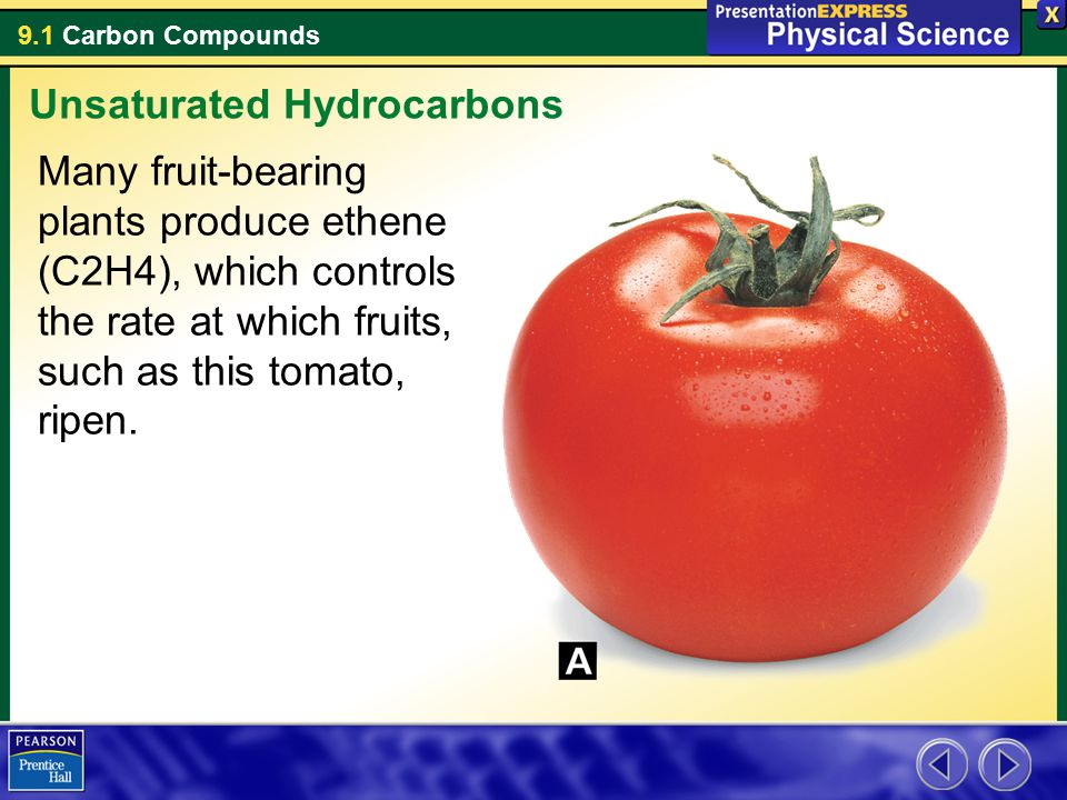 9.1 Carbon Compounds Many fruit-bearing plants produce ethene (C2H4), which controls the rate at which fruits, such as this tomato, ripen. Unsaturated