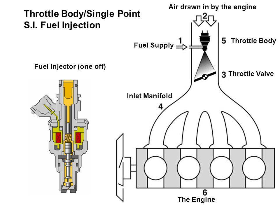 Air drawn in by the engine Fuel Supply Throttle Body Throttle Valve Inlet Manifold Fuel Injector (one off) The Engine Throttle Body/Single Point S.I.