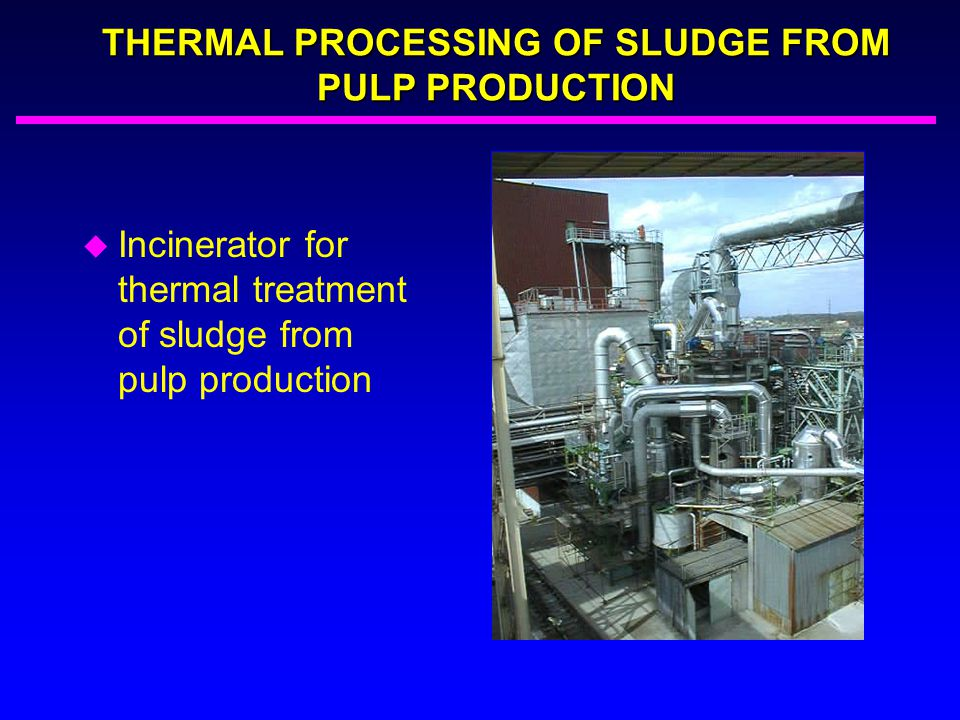 THERMAL PROCESSING OF SLUDGE FROM PULP PRODUCTION u Incinerator for thermal treatment of sludge from pulp production