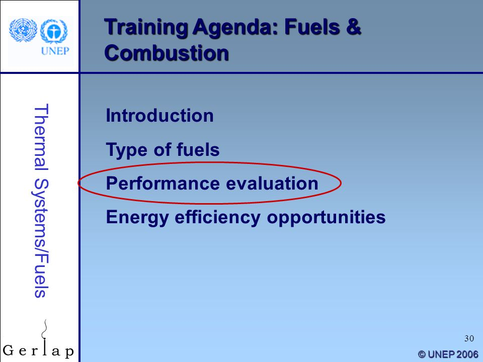 30 © UNEP 2006 Training Agenda: Fuels & Combustion Introduction Type of fuels Performance evaluation Energy efficiency opportunities Thermal Systems/F
