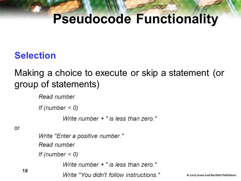 18 Pseudocode Functionality Selection Making a choice to execute or skip a statement (or group of statements)‏ Read number If (number < 0)‏ Write number + is less than zero. or Write Enter a positive number. Read number If (number < 0)‏ Write number + is less than zero. Write You didn t follow instructions.