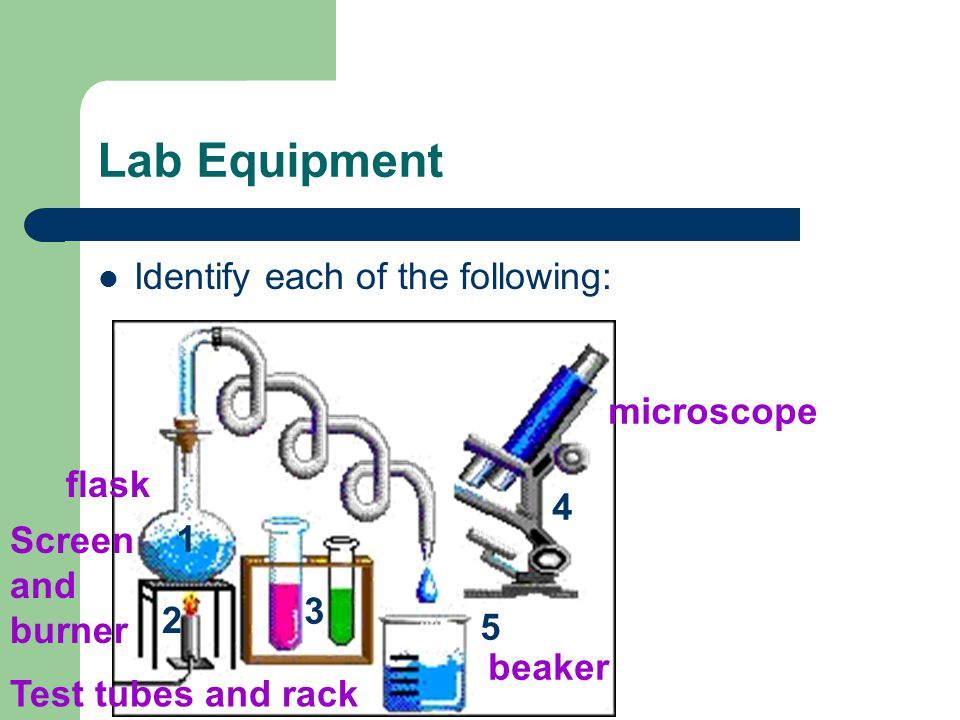 Lab Equipment Identify each of the following: flask Screen and burner microscope beaker Test tubes and rack 1 2 3 4 5