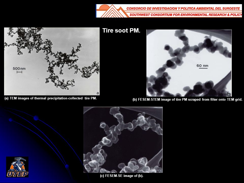 Tire soot PM. (a) TEM images of thermal precipitation-collected tire PM.