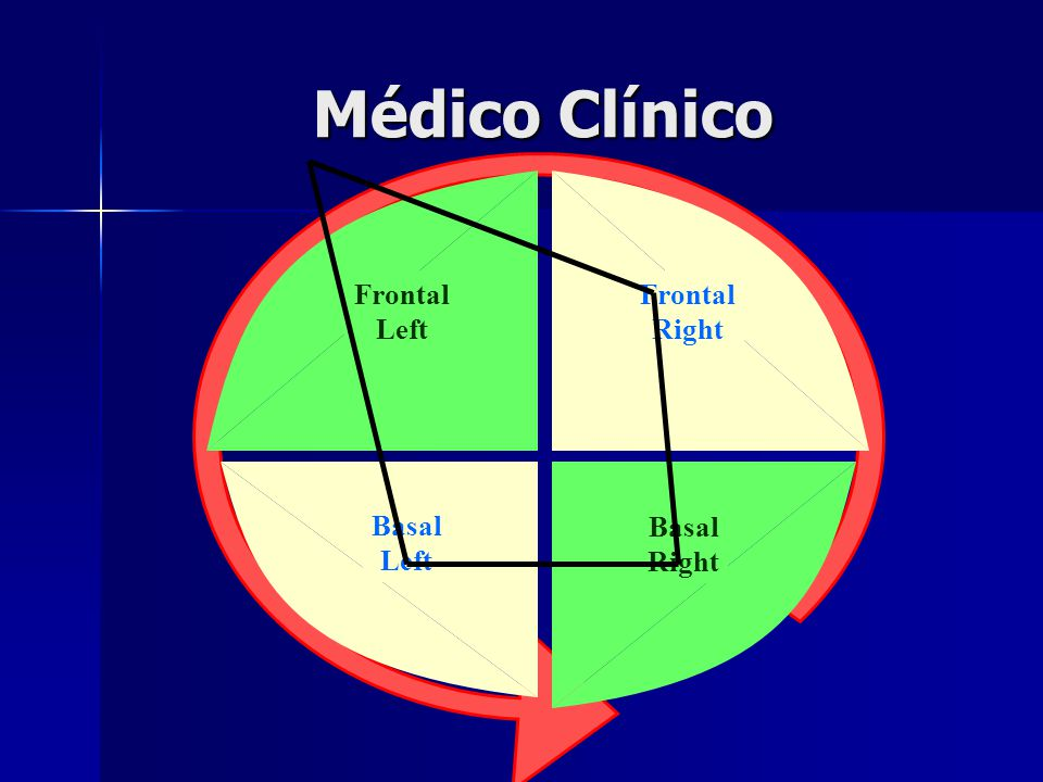 Médico Clínico Frontal Right Frontal Left Basal Left Basal Right