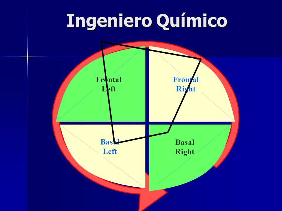Ingeniero Químico Frontal Right Frontal Left Basal Left Basal Right
