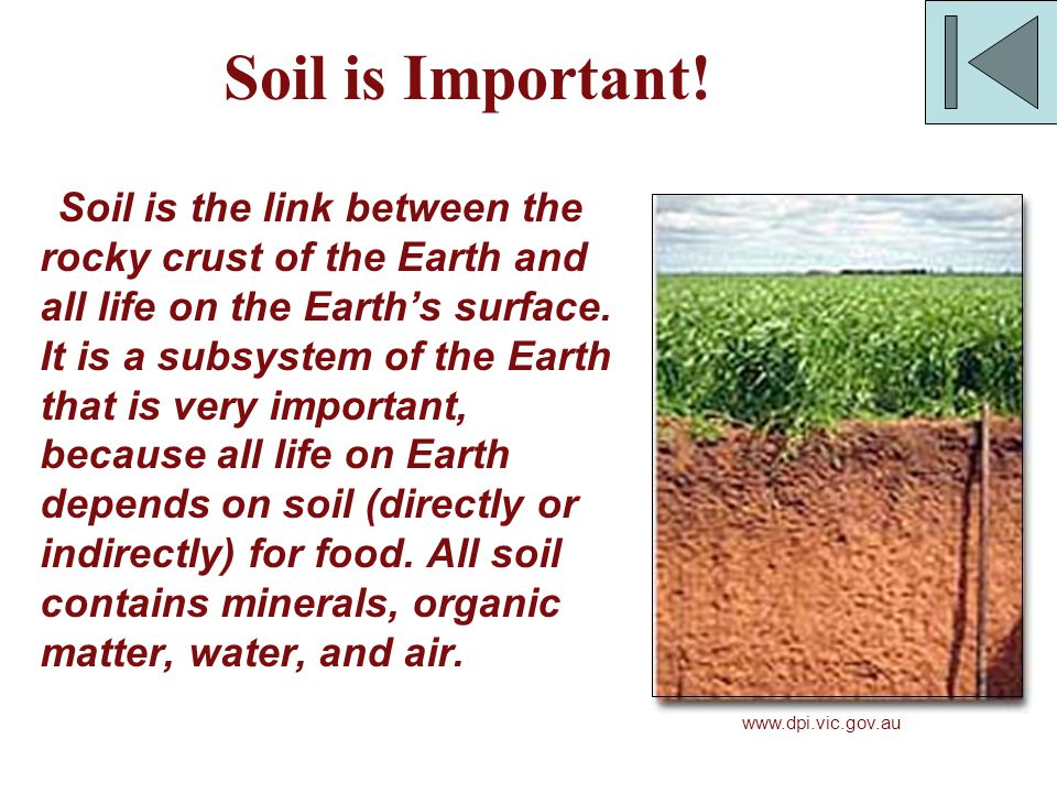 Soil is Important! Soil is the link between the rocky crust of the Earth and all life on the Earth's surface. It is a subsystem of the Earth that is v