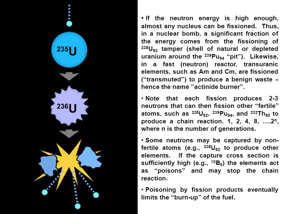 If the neutron energy is high enough, almost any nucleus can be fissioned.
