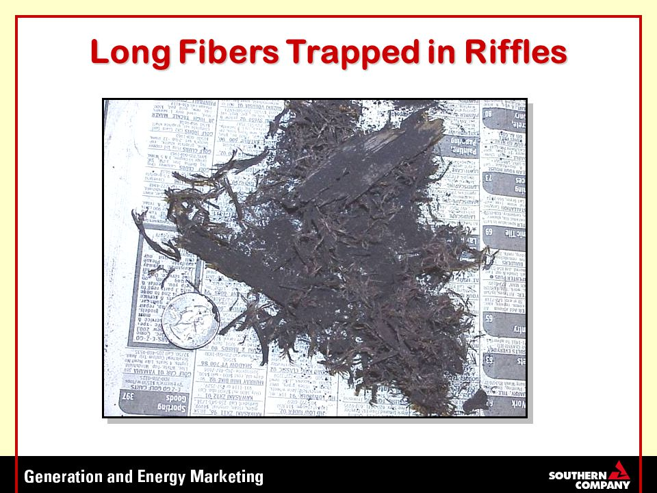 Long Fibers Trapped in Riffles