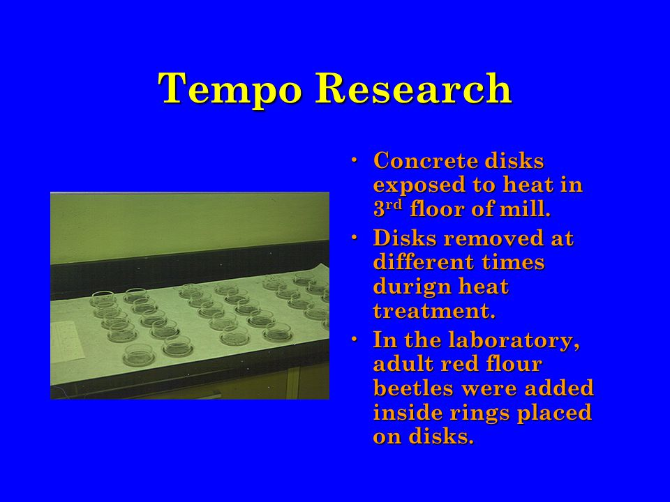 Tempo Research Concrete disks exposed to heat in 3 rd floor of mill.