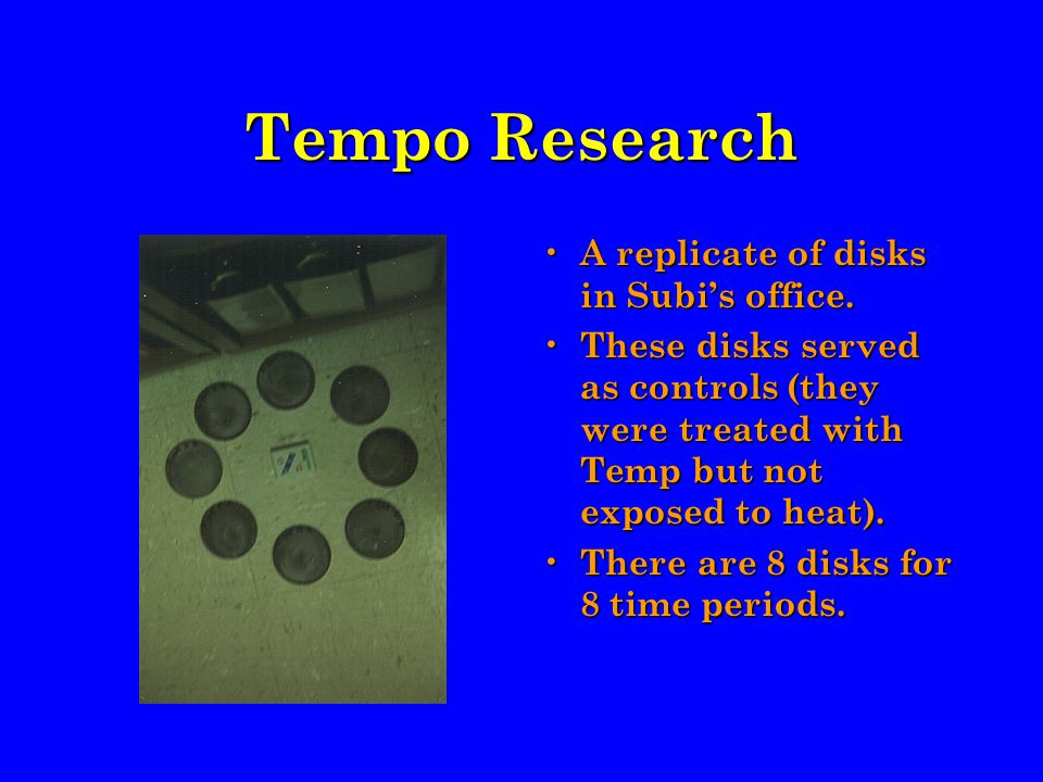 Tempo Research A replicate of disks in Subi's office.