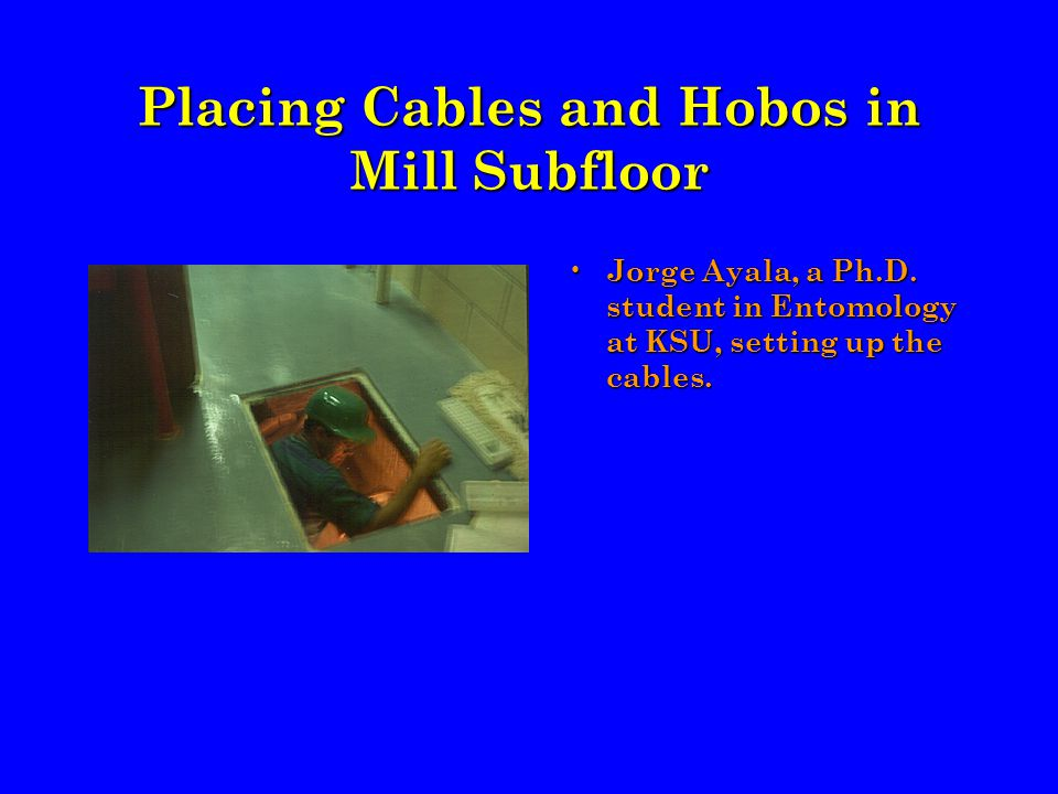 Placing Cables and Hobos in Mill Subfloor Jorge Ayala, a Ph.D.