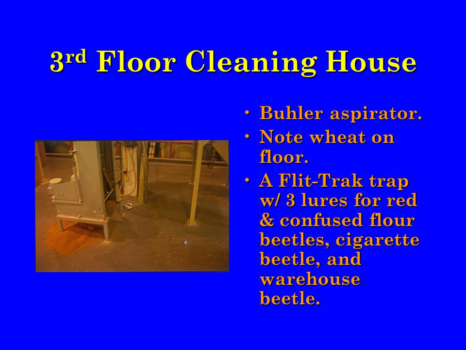 3 rd Floor Cleaning House Buhler aspirator. Note wheat on floor.