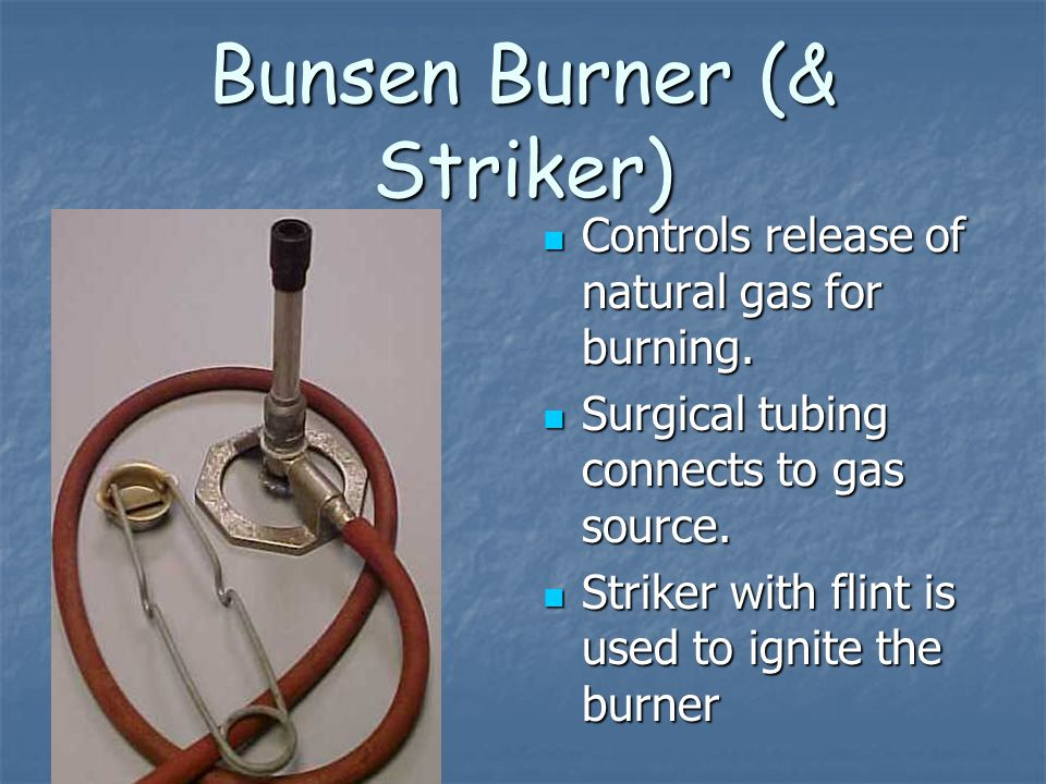 Bunsen Burner (& Striker) Controls release of natural gas for burning. Controls release of natural gas for burning. Surgical tubing connects to gas so